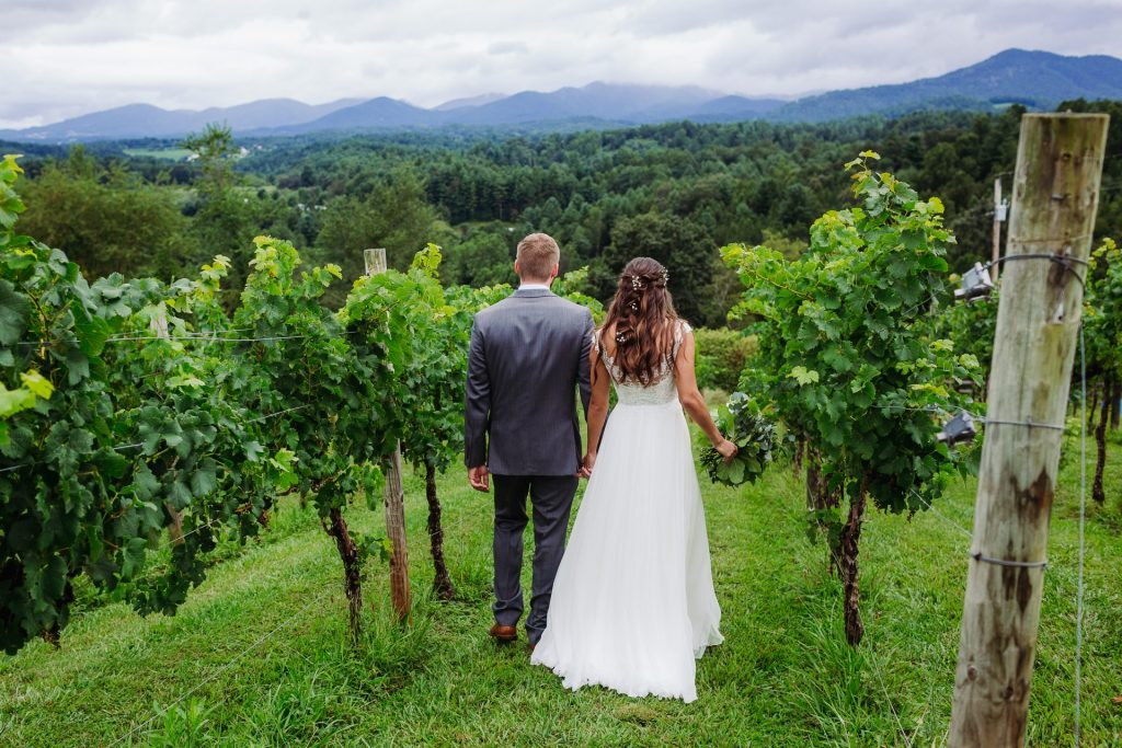 Asheville Vineyard
