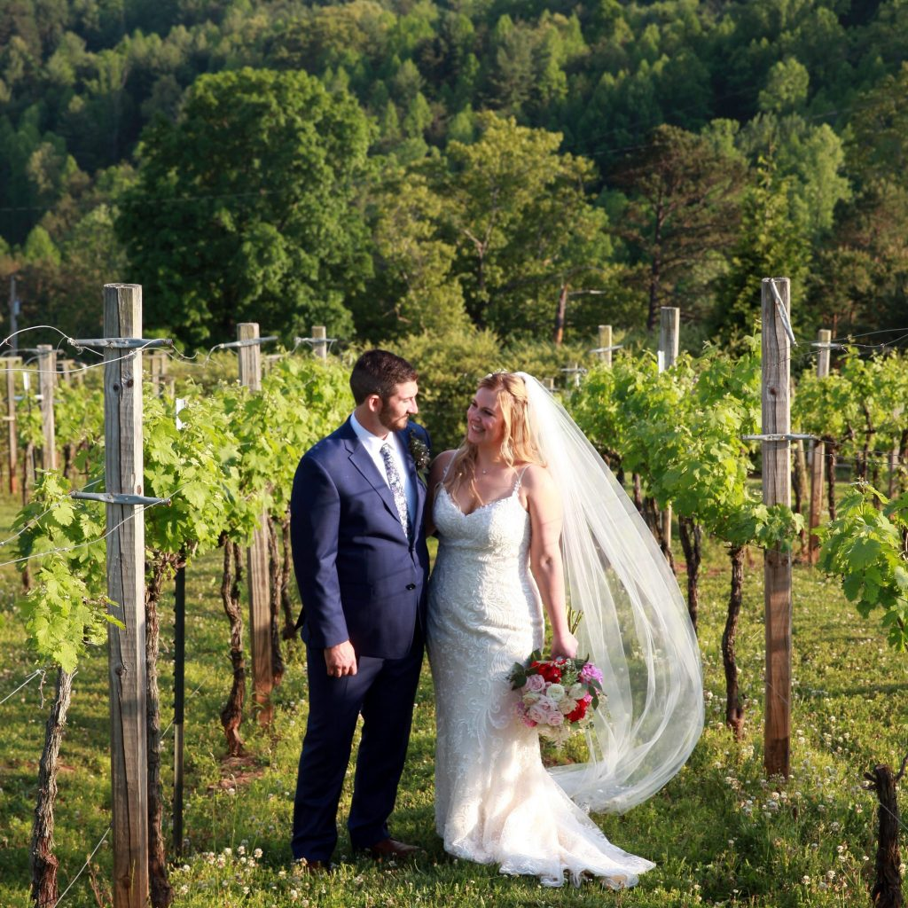 Jenny and Jager_Bride and Groom in Vineyard
