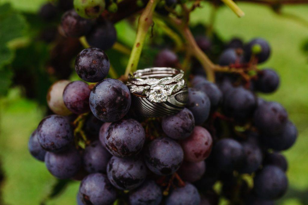 Vineyard Rings