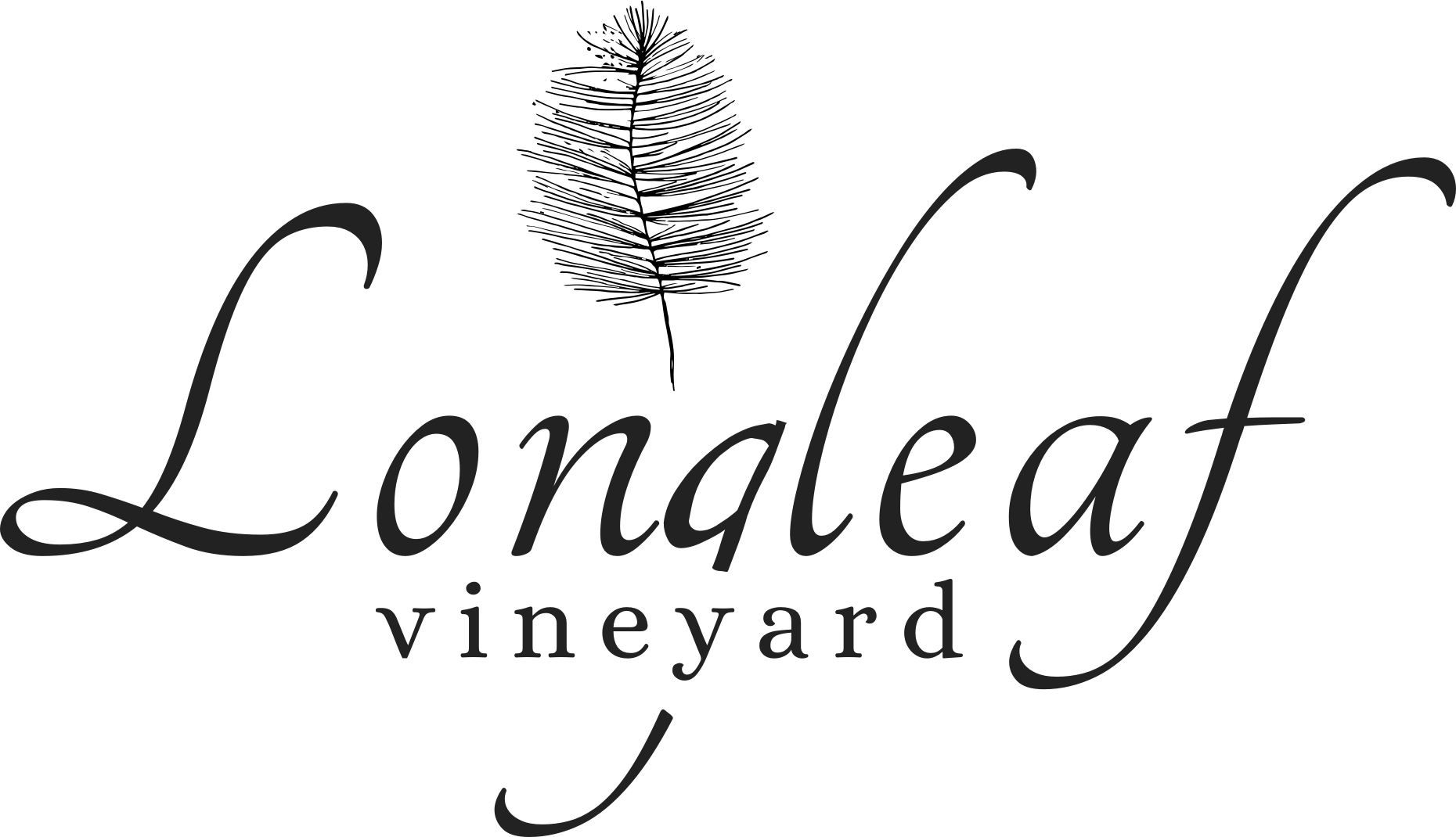longleaf-logo-vineyard-asheville-wedding-events